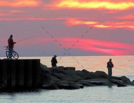 76-Catching Big Fish and Dreams